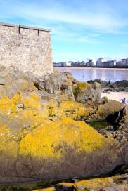 Yellow Rocks II_RET