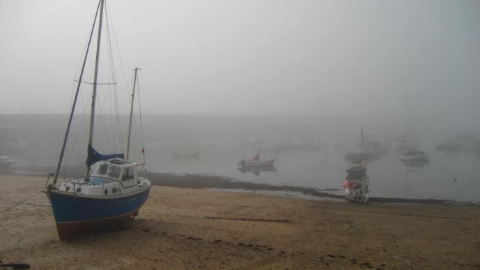 Jersey Fog
