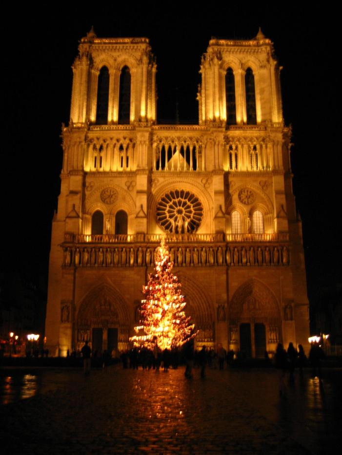 Notre Dame at Night VI