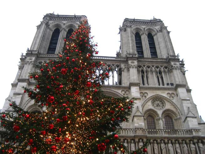 Notre Dame & Christmas Tree.jpg